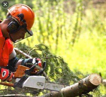 3M-Peltor bosbouw Veiligheidshelm met vizier H31-V5B 3